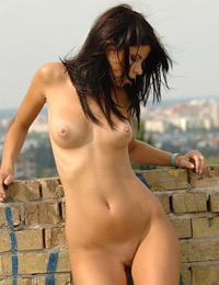 Model vanila in on the roof